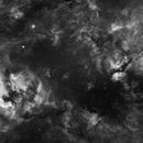 Cygnus mosaic,                                Marcus Andrea