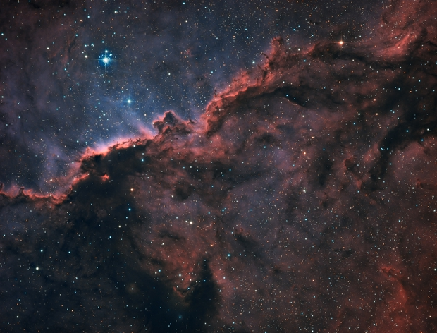 NGC 6188 - The Fighting Dragons of Ara (Bicolor),                                Ariel Cappelletti