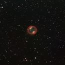 Jones Emberson 1 (drizzle),                                pterodattilo
