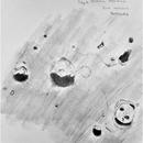 Aristillus & Friends (My First Sketch!),                                Zach Coldebella