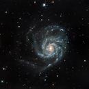 M101,                                Alessandro Speranza