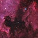 NGC7000 + IC5070 North America and Pelican Nebulae,                                Filippo Barbina