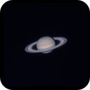 Saturn at Sunrise on 2021-05-31 with vintage Celestron C8,                                Jesco