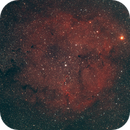 Elephant Trunk Nebula,                                Erik Marsh