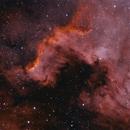 NGC 7000,                                vinnieb