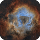 NGC 2237 Rosette Nebula - RC collimation testing (Mosaic),                                Paddy Gilliland