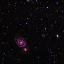 M51,                                Metalyard