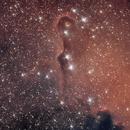 IC 1396 Elephant trunk nebula,                                anatiss