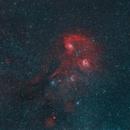 Auriga's Nebulae,                                jolind