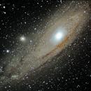 Andromeda Galaxie M31,                                Michael Rogge