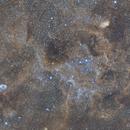 NGC 6888 Crescent Nebula and SH2-101 - Tulip nebula - Widefield,                                Cédric GIRAUD