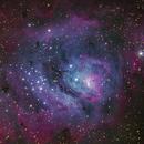 Lagoon Nebula,                                Ricardo L Pinto