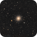 Hercules Globular Cluster,                                Steed Yu