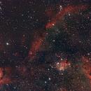 Heart Nebula (Partial),                                Ross Lloyd