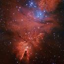 NGC 2264 Ha OIII The fox fur,                                litobrit