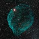 sh2-308 The dolphin nebula,                                jackstar