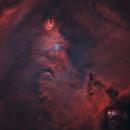 NGC 2264-la nébuleuse du cône HOOstarless,                                astromat89