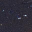 Orion,                                Starlight Hunter