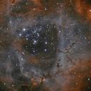 NGC2239 HA+O3,                                Vincent