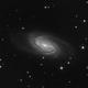 NGC 2903,                                Ryan Caputo
