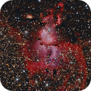 NGC 3581 - The Statue of Liberty Nebula,                                Fabian Rodriguez Frustaglia