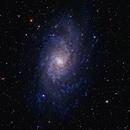 M33 300 mm telephoto,                                Roger Clark