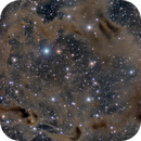 Dust clouds on Cepheus,                                rifo_m
