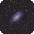 Triangulum Galaxy (M33),                                Sasho Panov