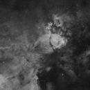 IC 1795 Fish Head Nebula,                                David Wills (Pixe...