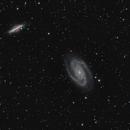 Messier 81 et 82,                                astronono