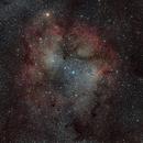Elephant Trunk Nebula IC 1396 (90'),                                star-watcher.ch