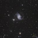 NGC-1566,                                Los_Calvos