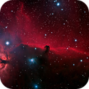 IC 434, B 33 (Horse Head Nebula),                                Klaus Haevecker
