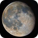 Color moon,                                Lucca Schwingel Viola