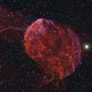 IC443 Jellfish Nebula,                                Rolf Dietrich