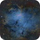 NGC 1491 / Sh2-206 / LBN704,                                John Kulin
