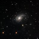 NGC 772  Nautilus Galaxy -- LRGB,                                Mike Mulcahy