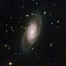 NGC2903,                                John R Carter, Sr.