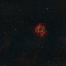 Rosette Nebula NGC2238,                                JoeRez