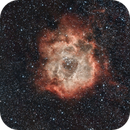 Rosette Nebula,                                Pharma98