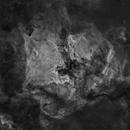 North America and Pelican Nebula, No Stars!,                                Marco van der Kooij
