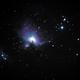 M42-Orion Nebula,                                Steve Field