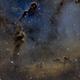 IC 1396 -  Elephant's Trunk SHO,                                Trevor Gunderson