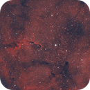 IC1396 The Elephant Trunk Nebula,                                Sebas7777