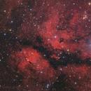 IC 1318 around Sadr,                                Stefan Westphal