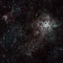 Tarantula Nebula - NGC 2070,                                klaussius