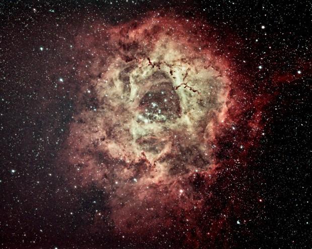 Rosette Nebula - NGC 2244,                                Kyle Anthony