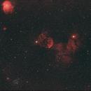 Jellyfish & Monkey head nebulae, M35 & NGC2158,                                Philippe Renaud