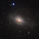 NGC 3521,                                Nikita Misiura
