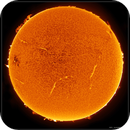 Our stormy Star - Sun in h-alpha in 2015 (collage),                                Łukasz Sujka